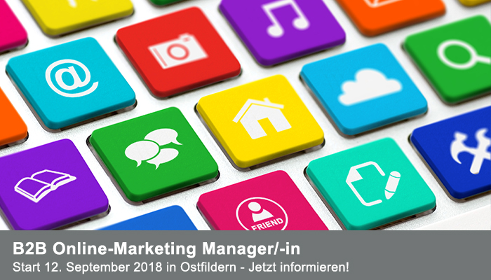 TAE-B2B Online-Marketing Manager/-in